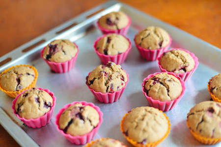 cowberry: The muffins with cowberry Stock Photo