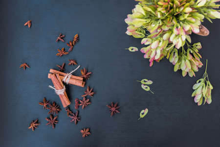 flatly: cinnamon, star anise and maple seeds top view flatly still life