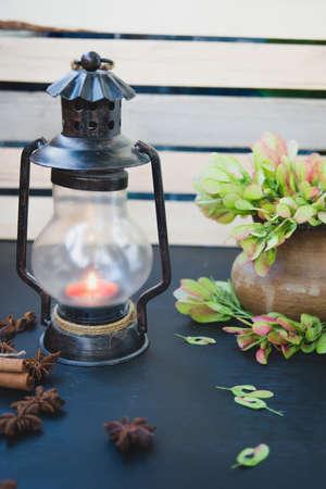 star life: todav�a semillas de vida de candelabro, canela, an�s estrella y arce