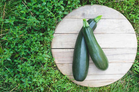 flatly: Two fresh zucchini on the wooden circle