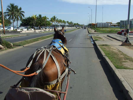 Ride in a horse carriage, Cienfuegos, Cuba photo