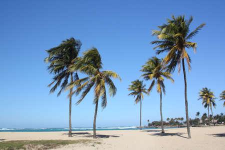 Seashore in Bacuranao beach, in Havana, Cuba - I photo