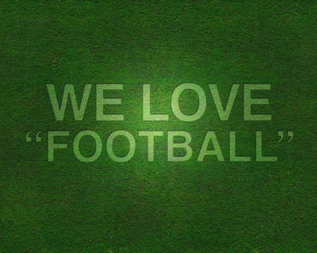 We love football on grass  Stock Photo - 8795013