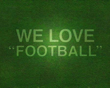 We love football on grass Stock Photo - 8795013