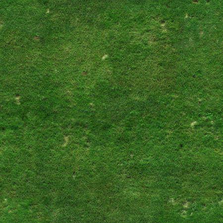 Green grass texture Stock Photo