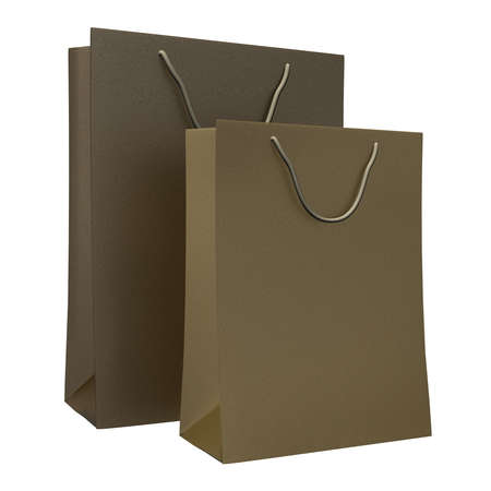 Two shopping paper bags