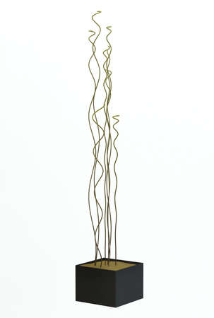 Small decorative tree Stock Photo - 11516907