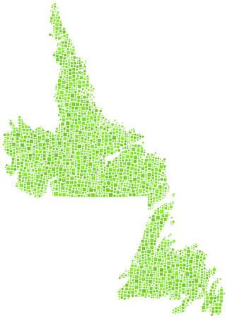 terranova: Mappa Decorative di Terranova Labrador in un mosaico di quadrati verdi