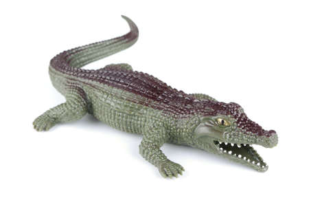 Rubber toy crocodile on a white background