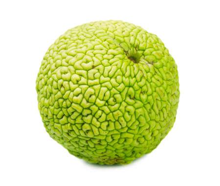 hedgeapple: Monkey brain fruit on a white background