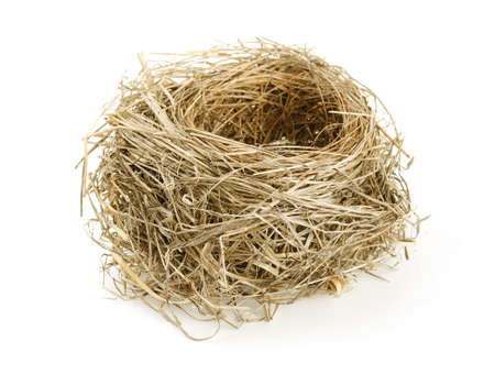Empty nest isolated on a white background