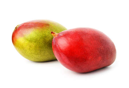 Fresh colorful tropical mangoes isolated on white background