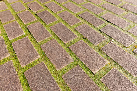 paving with moss between the tiles