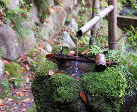 traditional japanese fountain tsukubai with moss