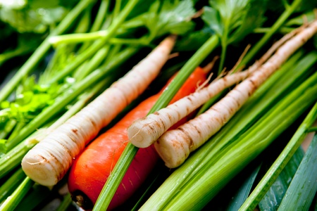 vegetables - carrot, parsley and other greens - soup ingredients