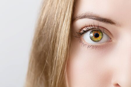 closeup of a womans eye - green and brown colored