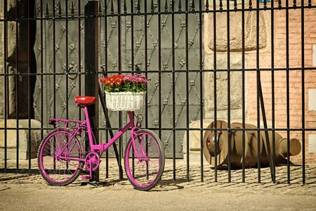 pink bike with white basket full of flowers standing by the old metal fence and metal door, vintage colors