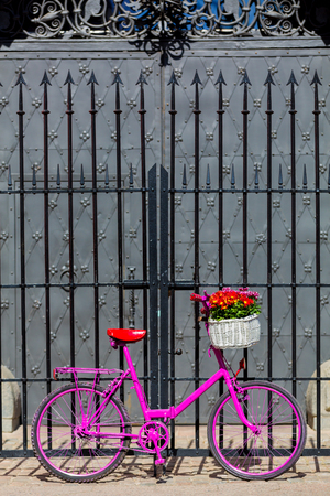 pink bike with white basket full of flowers standing by the old metal fence and metal door