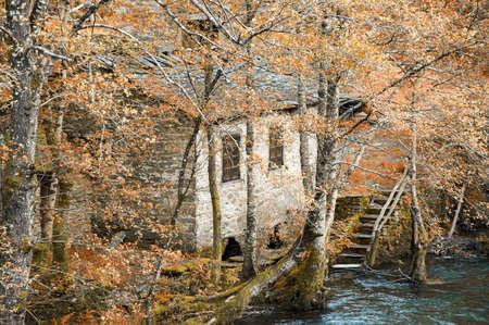 watermill: Old water mill in the forest in A Fonsagrada, Lugo, Spain