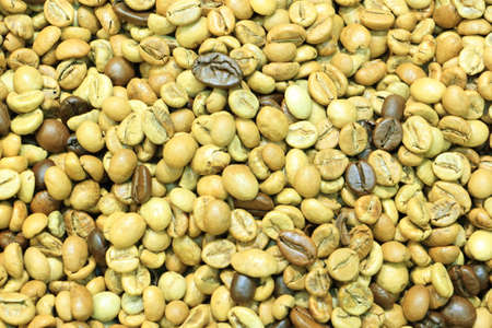 Yellow coffee roasted beans