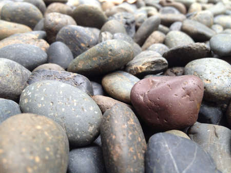 differentiate: Close up of a red stone on gray stones background.
