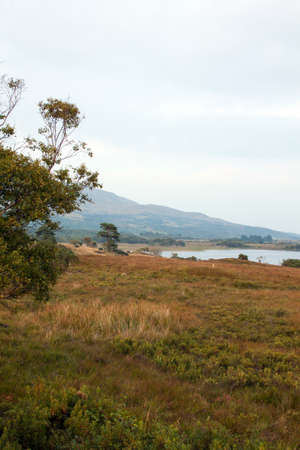 north   end: View from the North end of Lough Corrib Co. Galway Ireland.
