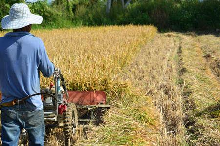 harvesters: Combine Harvesters
