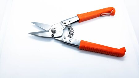 wire cutter or pliers isolate on white