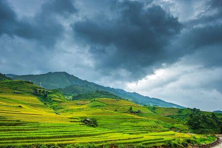 Beautiful landscape of rice terrace fields in Mu Cang Chai, Vietnam
