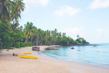 Beach with kayaks and coconut trees Stok Fotoğraf