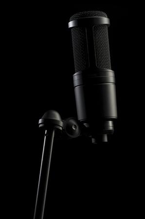 the photo shows studio condenser Microphone
