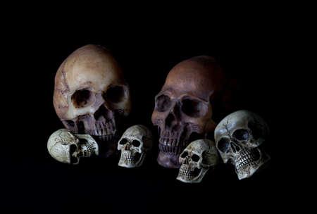 Human skull head on black background