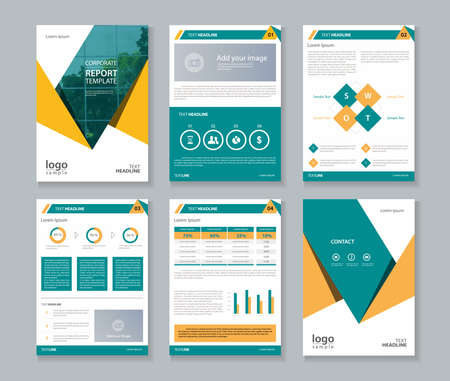 annual report , brochure , flyer, layout template  イラスト・ベクター素材