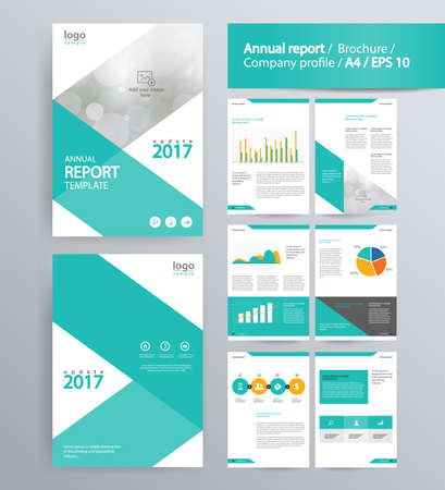 page layout for company profile, annual report, brochure, and flyer layout template. with info graphic element. and vector A4 size  for editable Ilustração