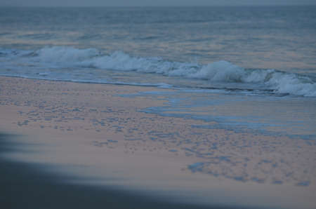 tybee island: sea and sand in pink twilight