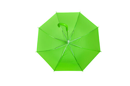 everyone: Umbrella that everyone must have