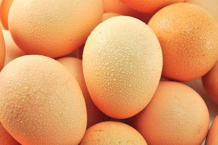healthful: Los huevos tienen alto contenido de prote�nas y saludable