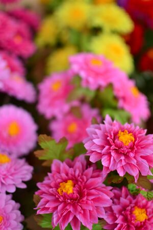 background of colorful artificial flowers Stock Photo - 13971670