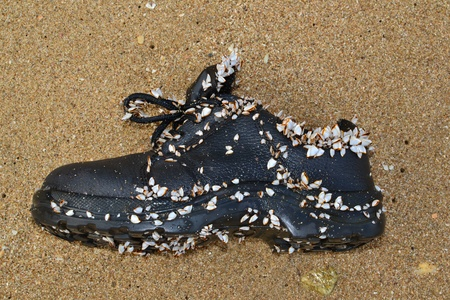 Old shoe on the sandy beach.