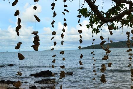 rayong: Rayong , tropical beach of Thailand.