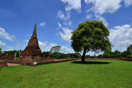 Ancient pagoda and Green tree with blue sky background photo