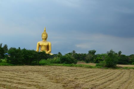 Rice feild in front of Statue of sitting buddha in Thai temple,Angthong Province,Thailand,Asia Stock Photo