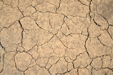 Texture of a drying ground. Stock Photo - 18365466