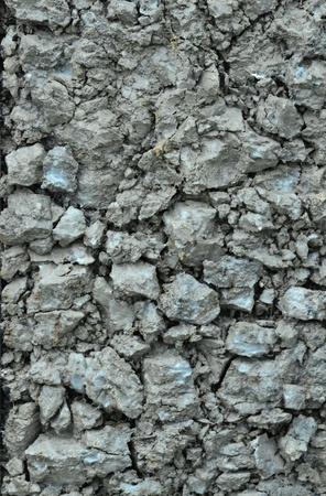 Texture of a drying ground. Stock Photo - 18365499