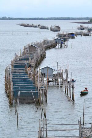 fishery products: The coastal fisheries in Chanthaburi province. Thailand.