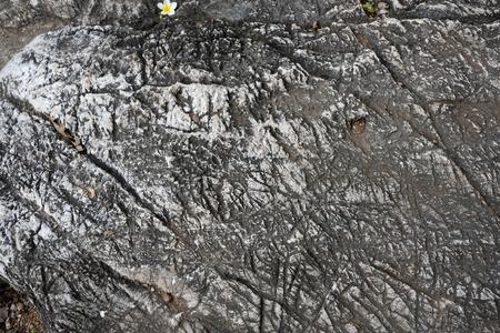 Dark lava stone texture background