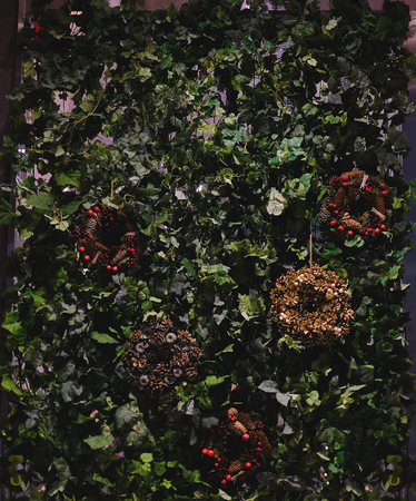 Various leaves and wreath of Christmas backdrop Imagens