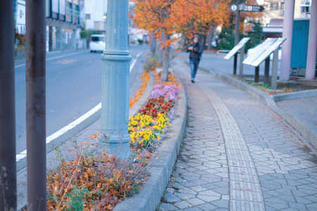 The cleanliness of the country in yamanashi province. Focus on street light post