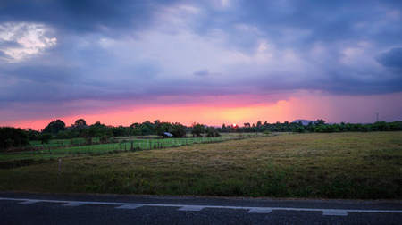 Cultivated green field with sunset scene background