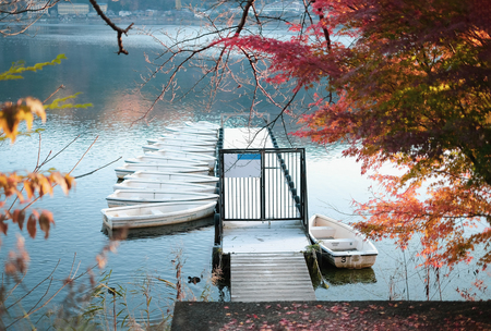 Tranquil scene of dock water and group of boats in autumn